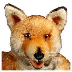 Rare Gorgeous Steiff Red Fox Hand Puppet ID