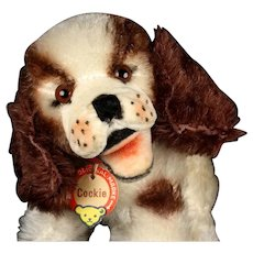 Rare Tiny Baby Sister Steiff Sitting Cockie Spaniel Puppy Dog Earliest Series Red/Brown Printed Chest Tag & Button Amazing Airbrushing