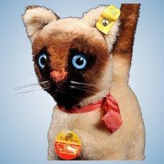 Rare Steiff Siamese Kitten Cat Cosy Siam All ID