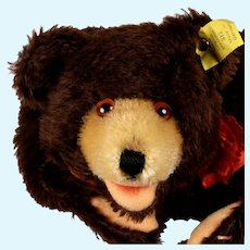 Rare Early Post-WWII Steiff Teddy Baby Bear Hand Puppet 2 IDs