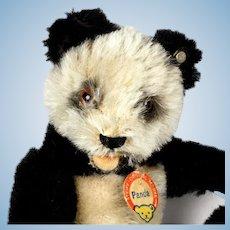 Baby Sister Rare Steiff Panda Teddy Bear 5xJointed 2 IDs