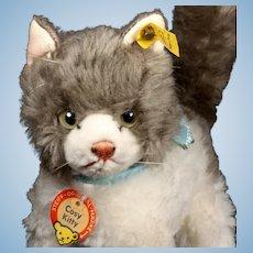 Sweet Steiff Cosy Kitty Cat Kitten All ID