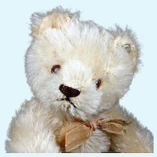 Little (Next to Smallest) Sister Rare WHITE Steiff 5xJointed Original Teddy Bear ID