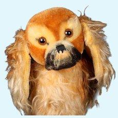 Biggest Sister Steiff Peky Pekingese Puppy Dog ID