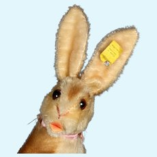 Rare Steiff Manni Begging Rabbit Hase Bunny 2 IDs