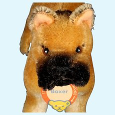 Middle Brother Standing Steiff Boxer Dog Successor to Sarras  ID