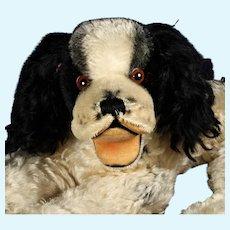 Rare Steiff RECLINING Black and White Cocker Spaniel Puppy Dog Cockie