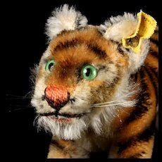 Handsome and Cute Earliest and Tiniest Model Steiff Walking Jungtiger Tiger Cub Wild Cat 2 IDs