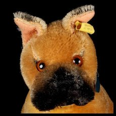 Rare 1950s Seated Big Brother Steiff Sweet Sarras Boxer Puppy Dog 2 IDs