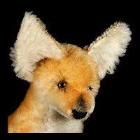 Rare Adorable Steiff Big Brother Seated Xorry Desert Fox ID