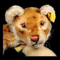 Rare Steiff Lion Cub Wild Cat Hand Puppet All ID 1954-1958