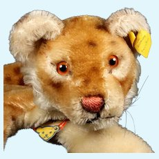 Rare Steiff Lion Cub Wild Cat Hand Puppet All ID 1954-1958