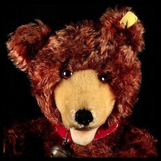 RARE Earliest Post-WWII Largest Steiff 5xJointed TEDDY BABY Bear BLOCK LETTER Button and Flag
