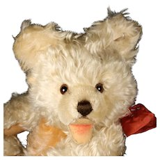 Spectacular RARE Big Brother Steiff 5xJointed WHITE ZOTTY Teddy Bear Cub ID 1960 and 1961 ONLY