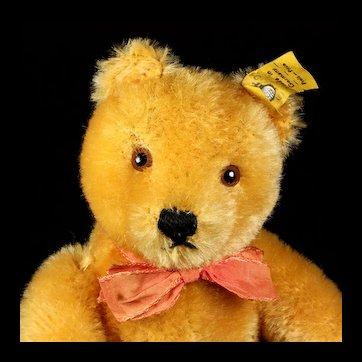 Gorgeous Deep Gold Blond Steiff 5xJointed Original Teddy Bear 2 IDs