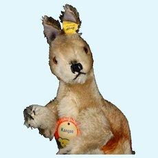 Rare Steiff MALE (No Pouch) Kangoo Kangaroo Poseable Head and Arms All ID