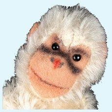 Earliest Model Rare Tiny Steiff 5xJointed White Jocko Chimpanzee (Not Monkey!) 2 IDs