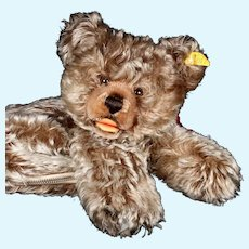 Rare Steiff Zipper Zotty Teddy Bear Hand Puppet and Pajama? Bag 2 IDs 2 Years Only Squeaker!
