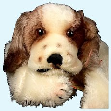 Gorgeous Steiff Brown and White Cockie Cocker Spaniel Puppy Dog Hand Puppet All ID