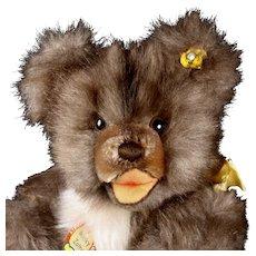 Rare Gorgeous Steiff 5XJointed MINKY Zotty Teddy Bear All ID
