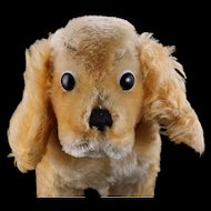 Steiff '60s Midsize Gold Standing Cockie Spaniel Puppy Dog 2 IDs