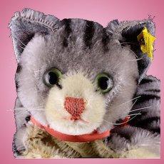 Earlier Model Steiff Tabby Cat Kitten Hand Puppet Glass Eyes 2 IDs