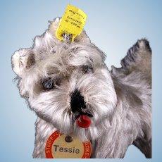 Little Sister Steiff Tessie Schnauzer Puppy Dog All ID