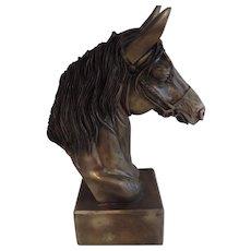 Horse Head Sculpture, Bronze Finish, Cold Cast Bronze