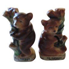 """No Hugging Allowed"" Bears In Trees Salt and Pepper Shakers"