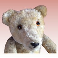 Mohair Teddy Bear, one of three, Named Homeless