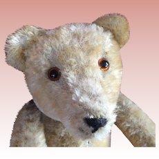 Mohair Teddy Bear, one of three, Named Homeless