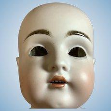 """Antique Bisque Kestner 154 Doll Head 12"""""""