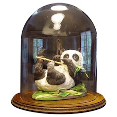 Boehm Porcelain Giant Panda Cub (400-47) w/Dome