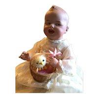German Bisque Gebruder Heubach Character Baby, Mold number 8191,
