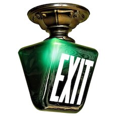 Two Dark Green EXIT Sign on Brass Fitter