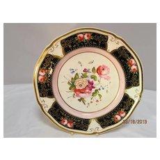 English  Porcelain  Plate