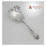Cracker Spoon Huge Daisy Blackinton Sterling Silver 1904 No Monograms