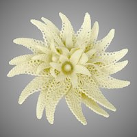 Huge Vintage Lacy Plastic White Flower PIn Brooch