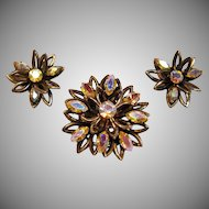 Elegant and Rare Brevete Brooch and Clip On Earrings