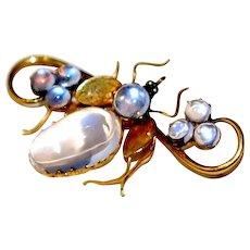 Victorian 15ct Gold Moonstone Bug Pin Brooch