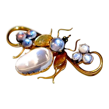 Victorian 15ct Gold Moonstone Bug Pin Brooch