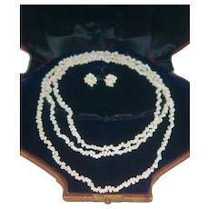 "48"" Long Shell Necklace Chain & Earrings"
