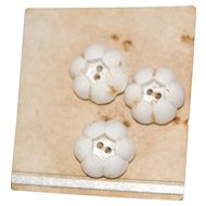 3 Vintage White Flower Buttons on Card
