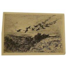 Karl Bodmer  Flying geese  Original  1873