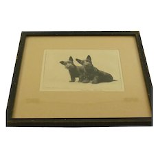 Morgan Dennis   Original  Scottish Terrier Puppy