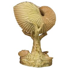 1903 Royal Worcester Blush Nautilus Form Vase