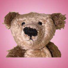 Mohair artist teddy bear two tone gold brown