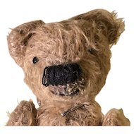 Small silly looking gold mohair artist teddy bear big nose