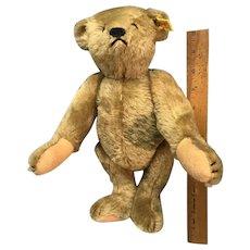Reissue of the original Marguerite Steiff Teddy Bear 1977