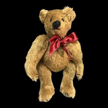 Gold German style mohair teddy bear
